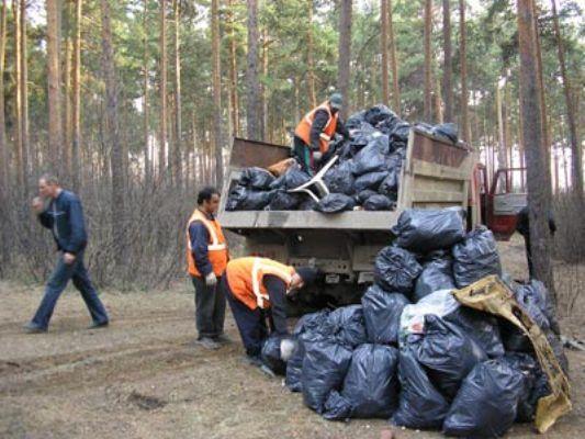 Куда обратиться для вывоза мусора в Минске?