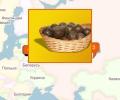 Где можно купить свежий мед и прополис в Минске?